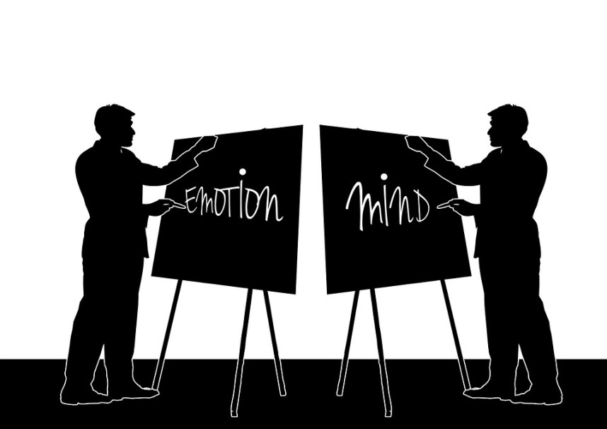How To Take Business Decisions That Are Not Influenced By Emotions
