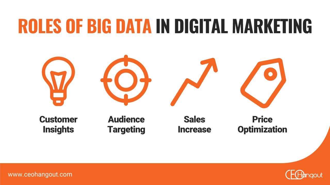 roles of big data